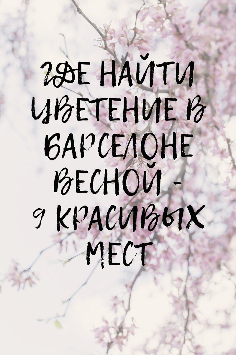 ГДЕ НАЙТИ ЦВЕТЕНИЕ В БАРСЕЛОНЕ ВЕСНОЙ - 9 КРАСИВЫХ МЕСТ