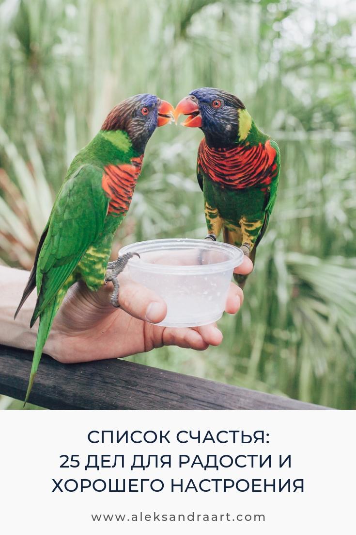 25 ДЕЛ ДЛЯ РАДОСТИ И ХОРОШЕГО НАСТРОЕНИЯ | aleksandraart.com