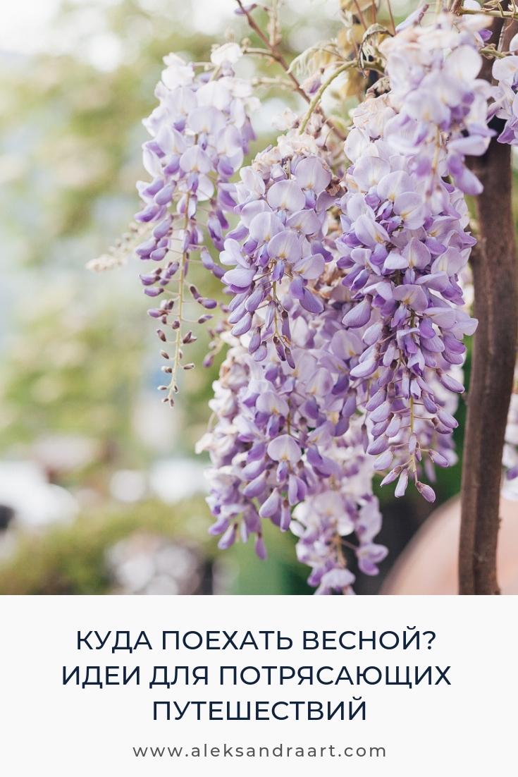 КУДА ПОЕХАТЬ ВЕСНОЙ? ИДЕИ ДЛЯ ПОТРЯСАЮЩИХ ПУТЕШЕСТВИЙ | aleksandraart.com
