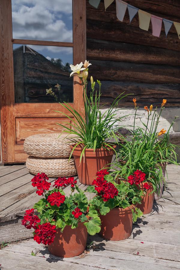 Летнее кафе с цветами Сааремаа