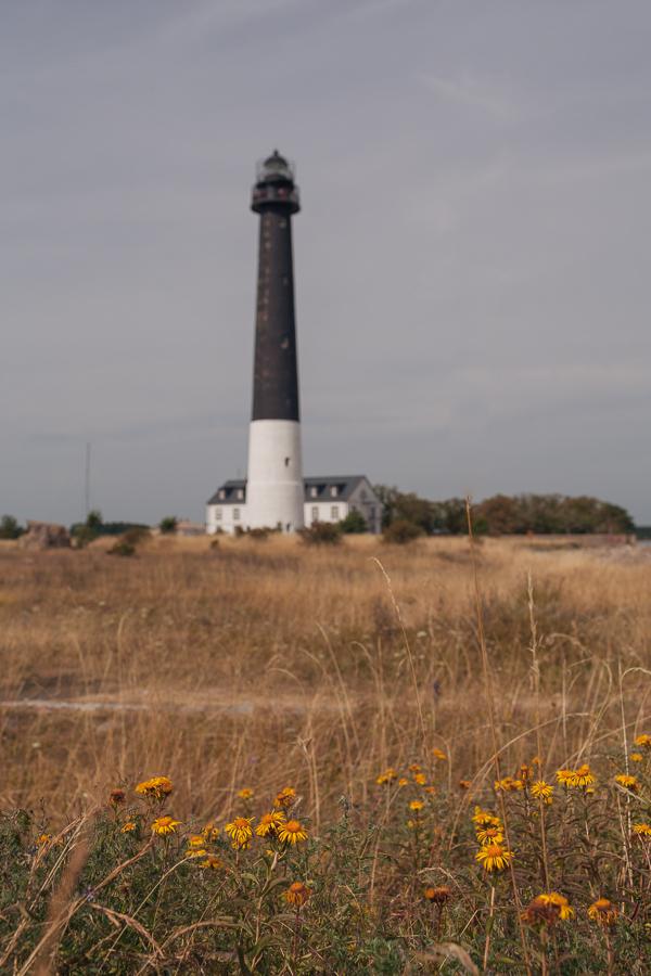 маяк сырве сааремаа